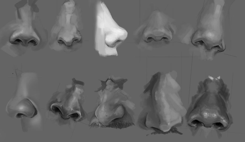 [Image: nose_sketching_by_josephhoward-dc2qht4.jpg]