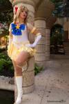 Sailor Venus Pop It