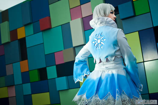 Weiss Snowflake Back