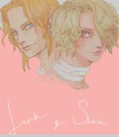 LinkandSheik by Sui-yumeshima