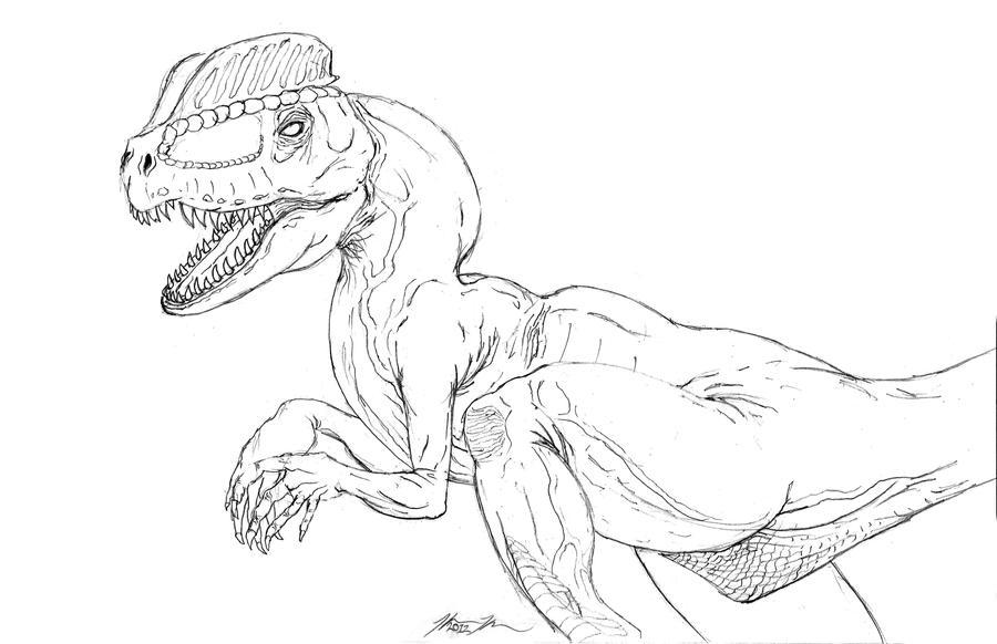 dilophosaurus coloring page - dilophosaurus line art by harrisonkoch on deviantart
