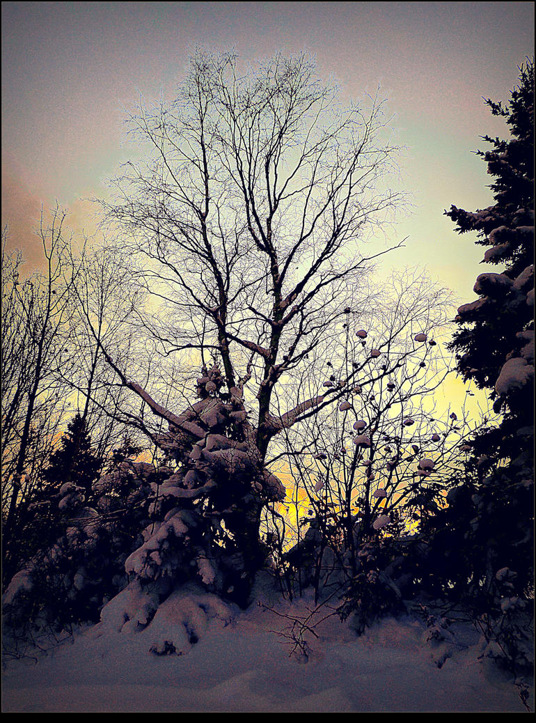 Dusk in Winter by surrealistic-gloom