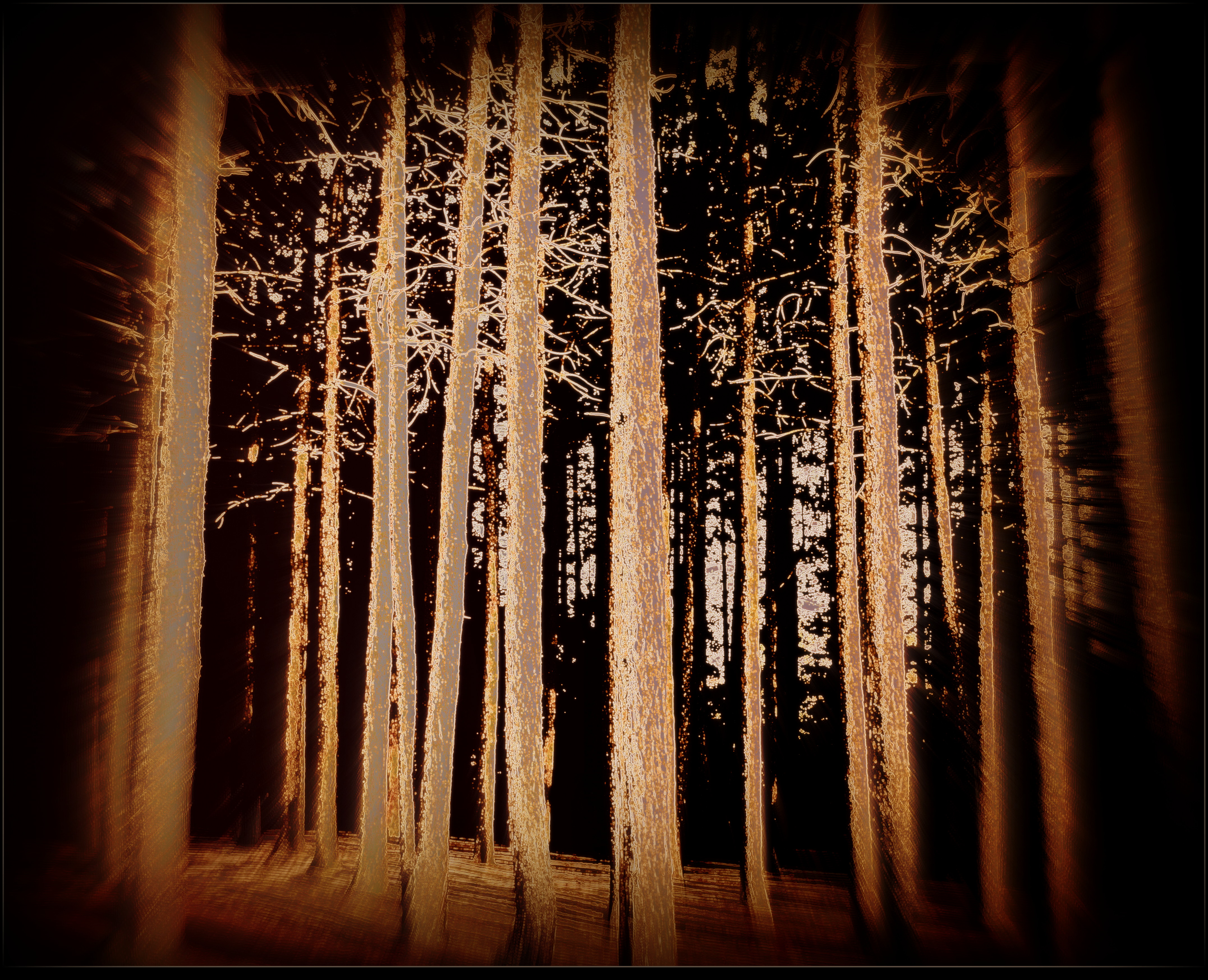 Eerie Forest by surrealistic-gloom
