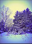'Tis the Winter_2