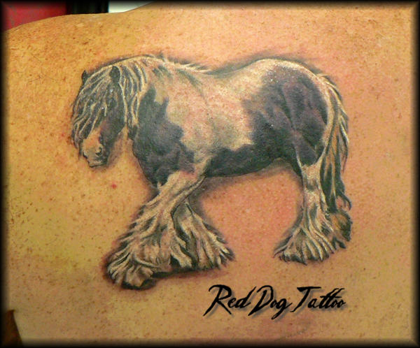 Shire horse tattoos