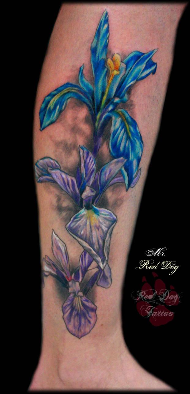 15216d5afb5ad Iris tattoo by Reddogtattoo on DeviantArt