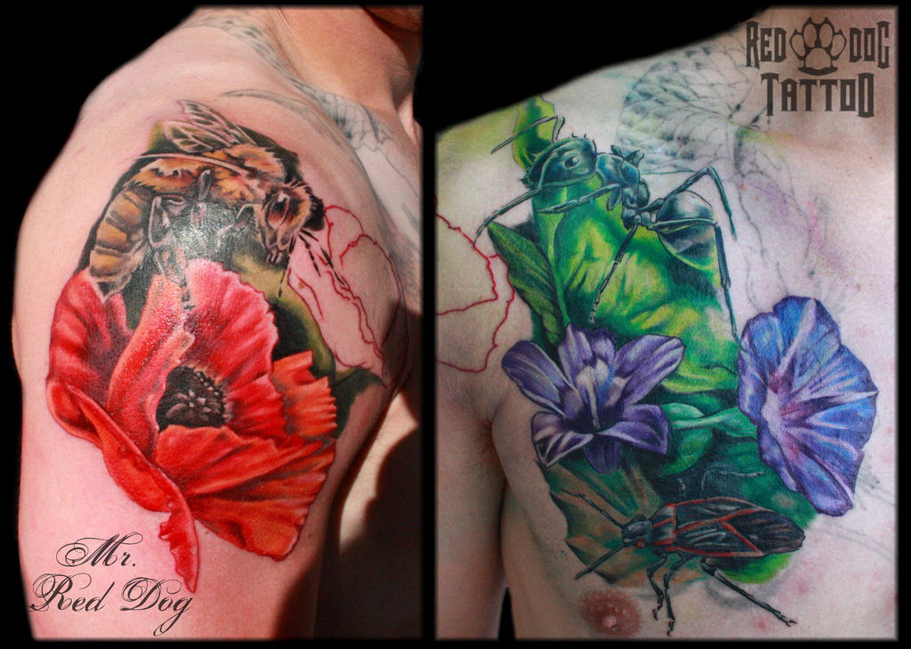 Chest Cover Up On Process By Reddogtattoo On DeviantArt