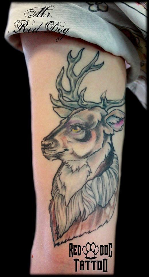 Healed Deer by Reddogtattoo