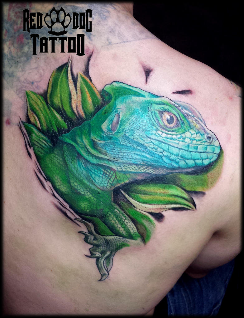 Iguana cover up by Reddogtattoo