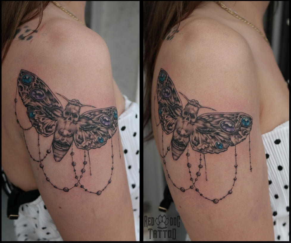Skull Moth Tattoo by Reddogtattoo