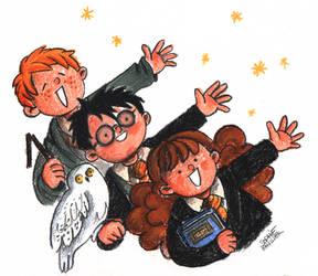 Harry et son gang