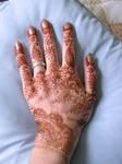 Hand Mehndi3