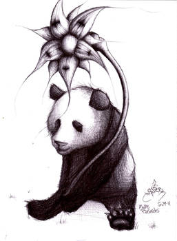 Panda in pen