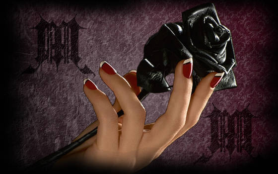 black rose for your love