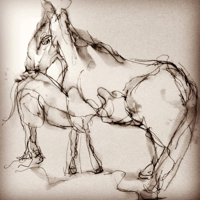 Mini horses by LaurieLefebvre