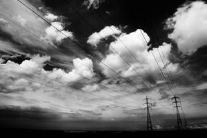 to run with cables and skies