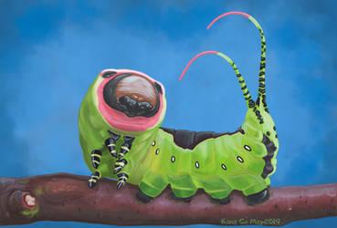 Caterpillar Study by KanaGo