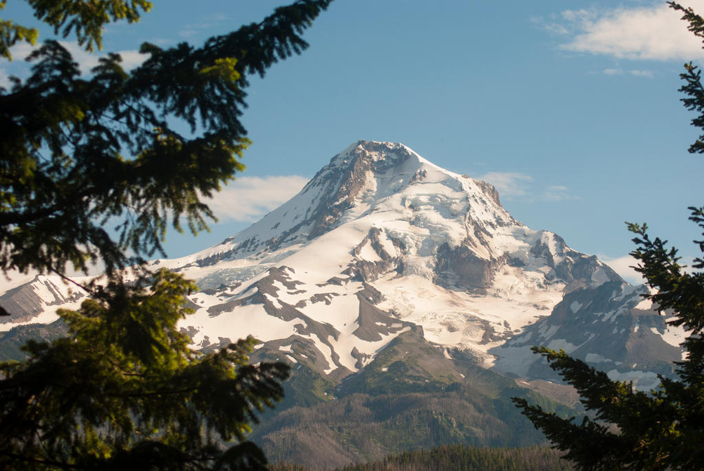 Mount Hood from the Firs by Bawwomick