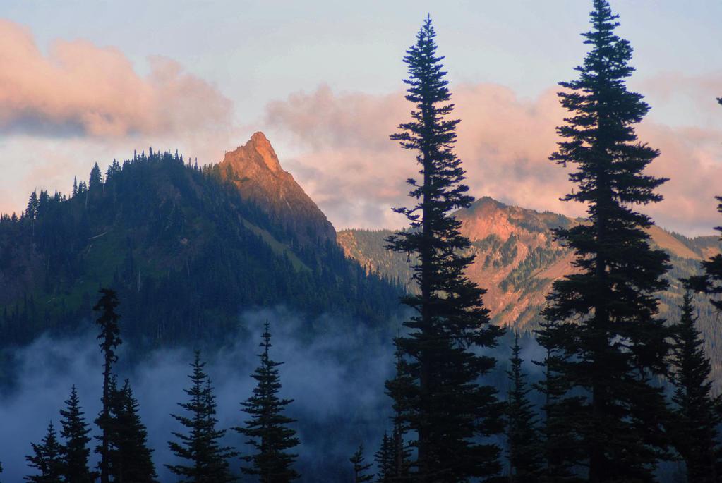 Foggy Peaks by Bawwomick