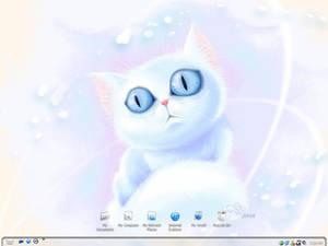 White Blue-Eyed Cat