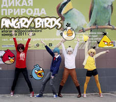 Angry Birds!!! by Arichka