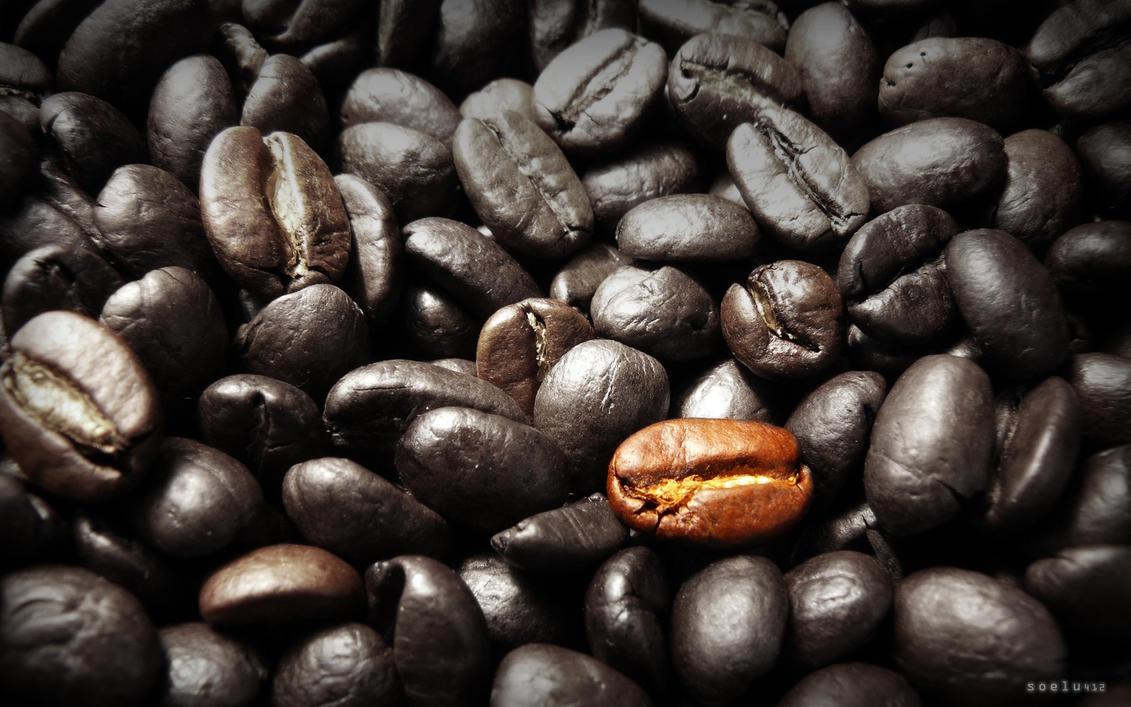 Coffee at you fingertips 2 by soelu412