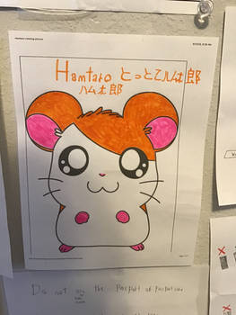 Hamtaro Tottoko Hamutaro 1997-2003