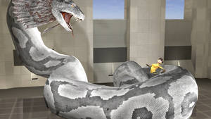 Bva And Snake 2
