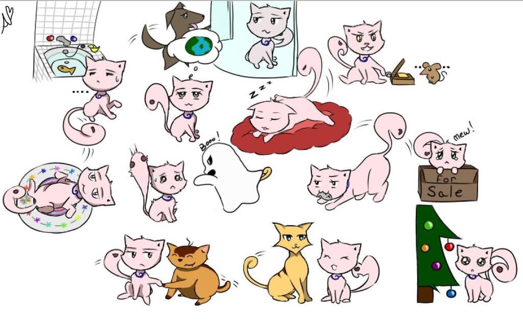 Cat Feelz Compilation by WatashiNoHatsukoi