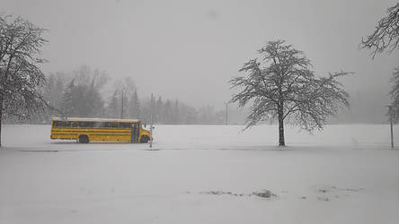 Winter Bus