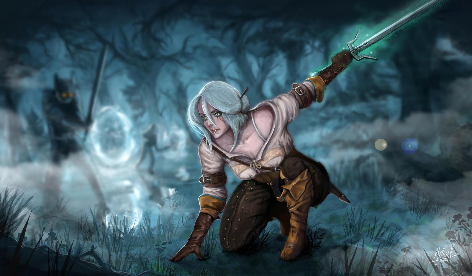 The Witcher 3 Fanart By Mi3kka1S4 On DeviantArt