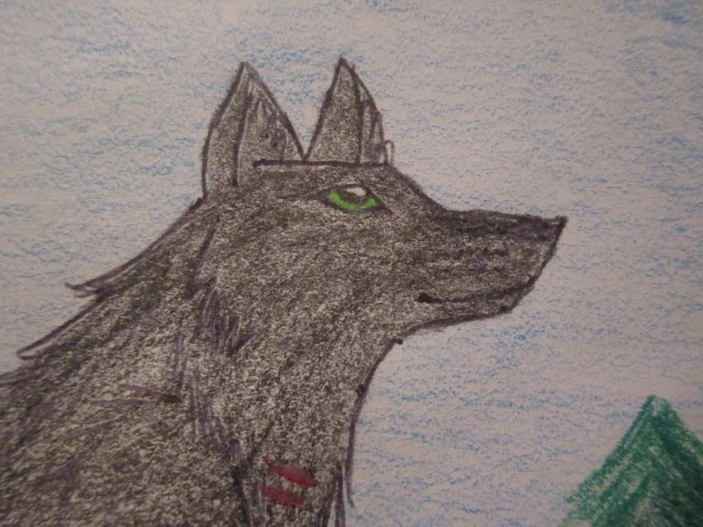 Erick-the-Druid's Profile Picture