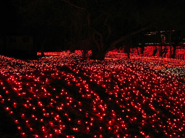 Christmas lights02 by HandOfLight