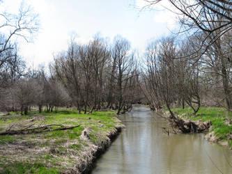 creekystream37 by HandOfLight