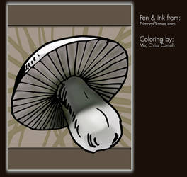 Coloring Project: Mushroom by gamehengraphics