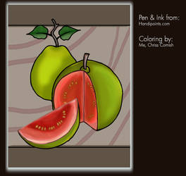 Coloring Project: Guava by gamehengraphics