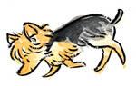 Dog Parade: Australian Terrier