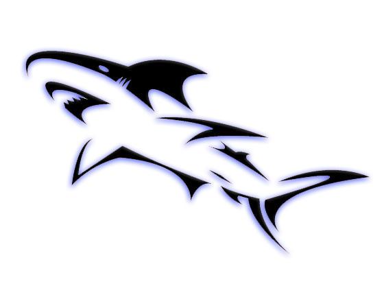 Tribal great white shark - photo#19