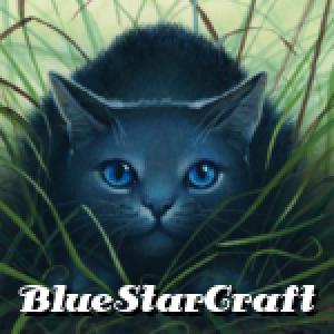 Bluestarcraft's Profile Picture
