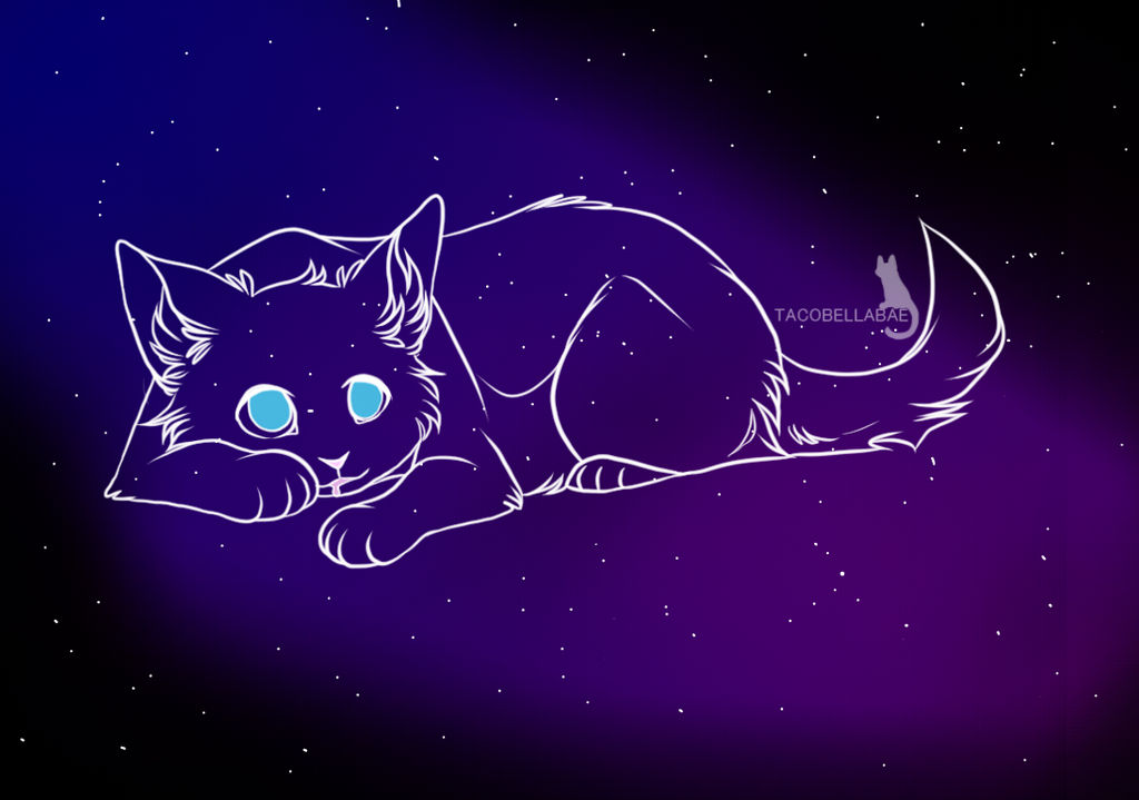 Starclan by Bluestarcraft
