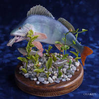 Perch diorama of polymer clay by OlhaARTS