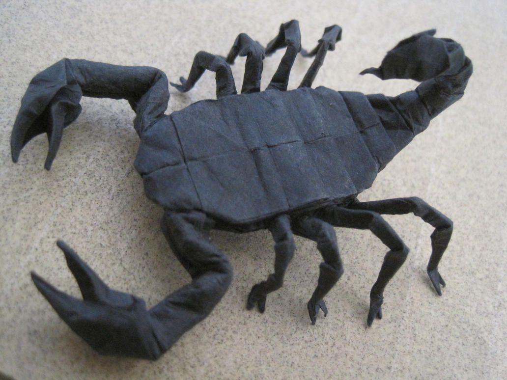 Origami Scorpion By TimsOrigami