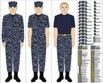 US Navy Working Uniform