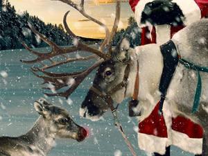 Next year, Rudolph!