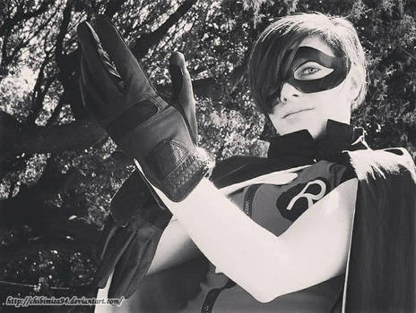 Young Justice- Robin