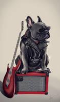 AC/DC the dog