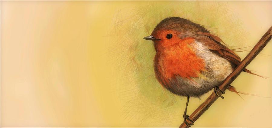 Little bird song by zIoana