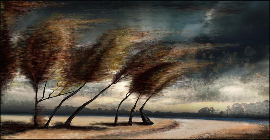 Storm by zIoana