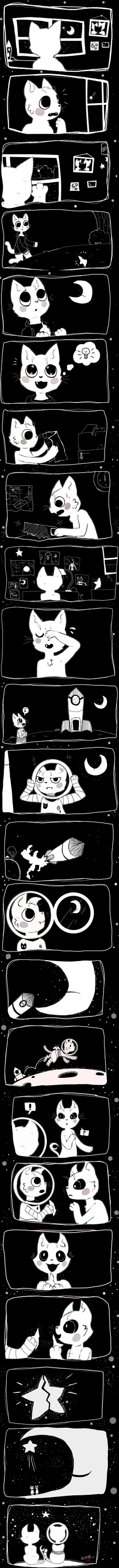 Space Cats by Ocene