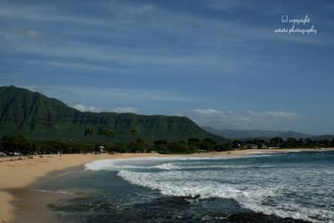 Hawaii 20
